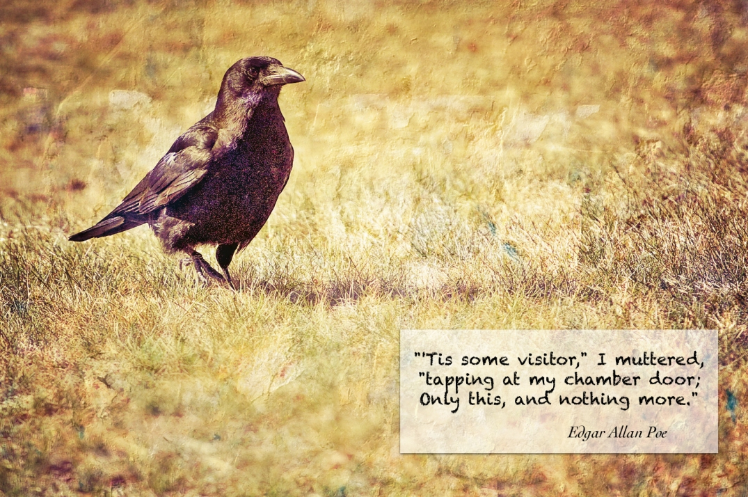 CrowQuote